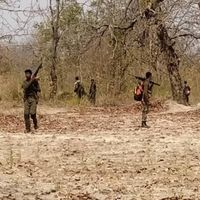 बीजापुर हमला : क्या नक्सलियों के जाल में फंस गए थे सुरक्षा बलों के जवान